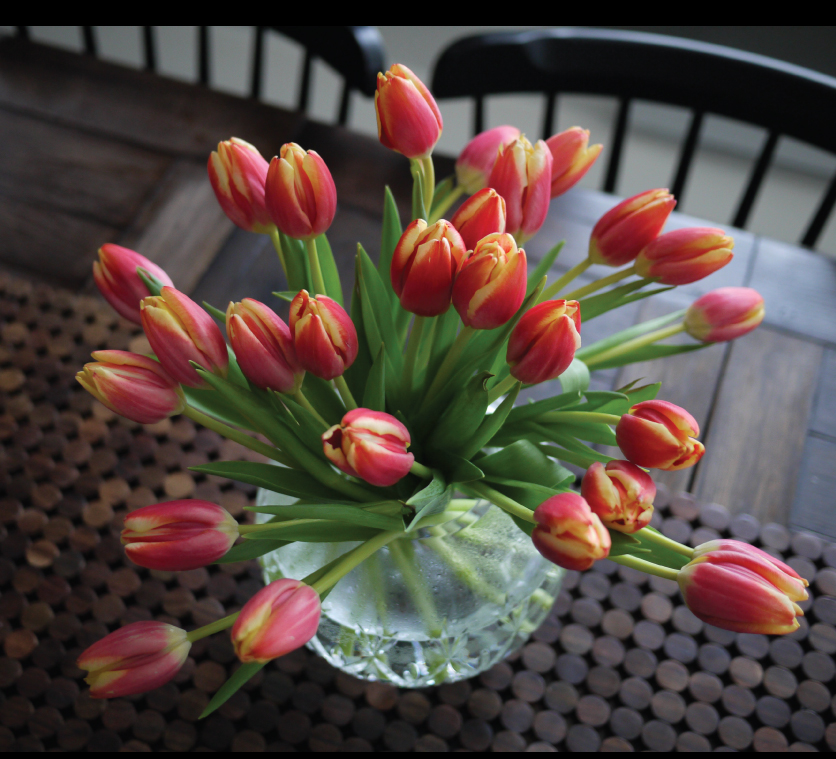Tulip-arrangement-in-crystal-rose-bowl