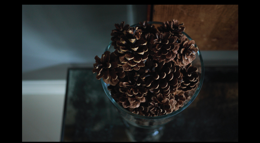 Pinecones-in-a-glass-hurricane